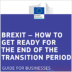 Brexit: How to Get Ready for the End of the Transition Period